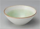 若草6.0盛鉢