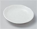 白結晶4.0皿